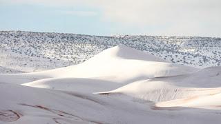 Είδαν «άσπρη μέρα» στη Σαχάρα