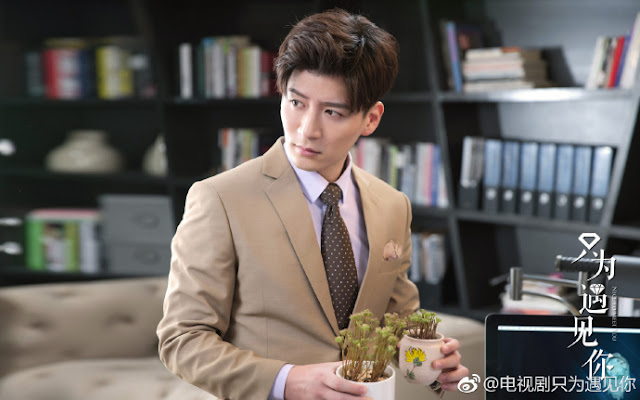 nice to meet you cdrama Shawn Wei Qianxiang