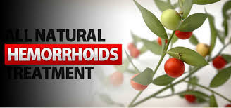 Home Remedies For Your Hemorrhoids