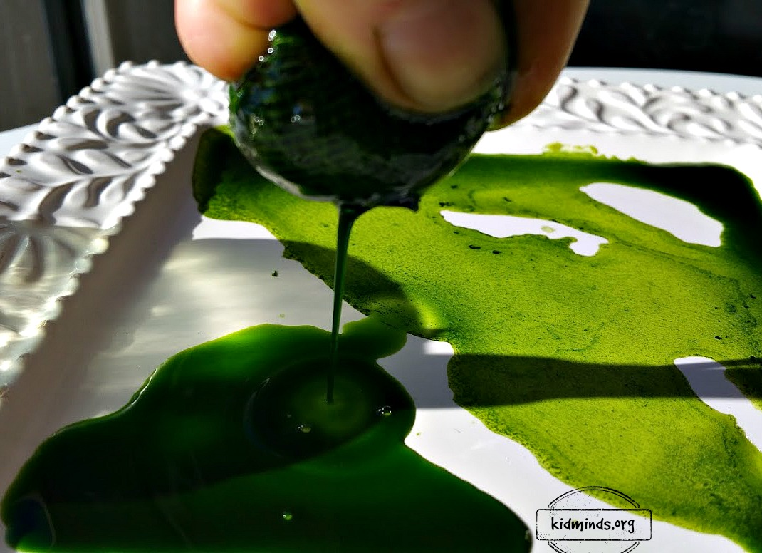 Maple Leaf Science: how to extract chlorophyll and paint a