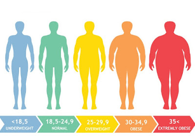 What Is Body Mass Index And How Does It Matter?