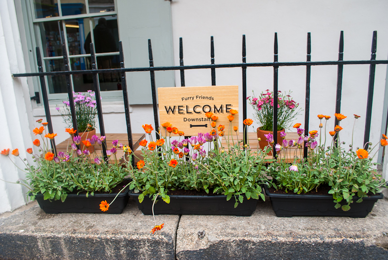 Quirky welcome signs in Falmouth, conrwall, England