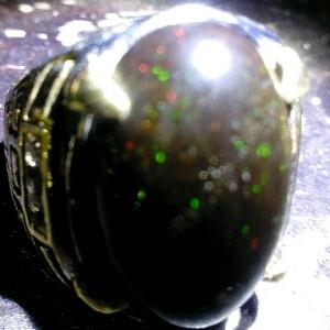 cara merawat black opal lumpur