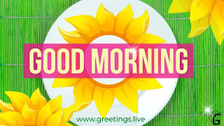 Sunflowers Creative Positive Morning wishes HD Images