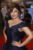 Payal Ghosh aka Harika in Dark Blue Deep Neck Sleeveless Gown at 64th Jio Filmfare Awards South 2017 ~  Exclusive 133.JPG