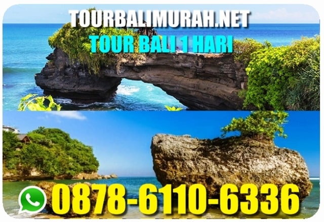 TOUR BALI 1 HARI MURAH, TOUR BALI 1 HARI UBUD TANAH LOT, KELILING BALI 1 HARI