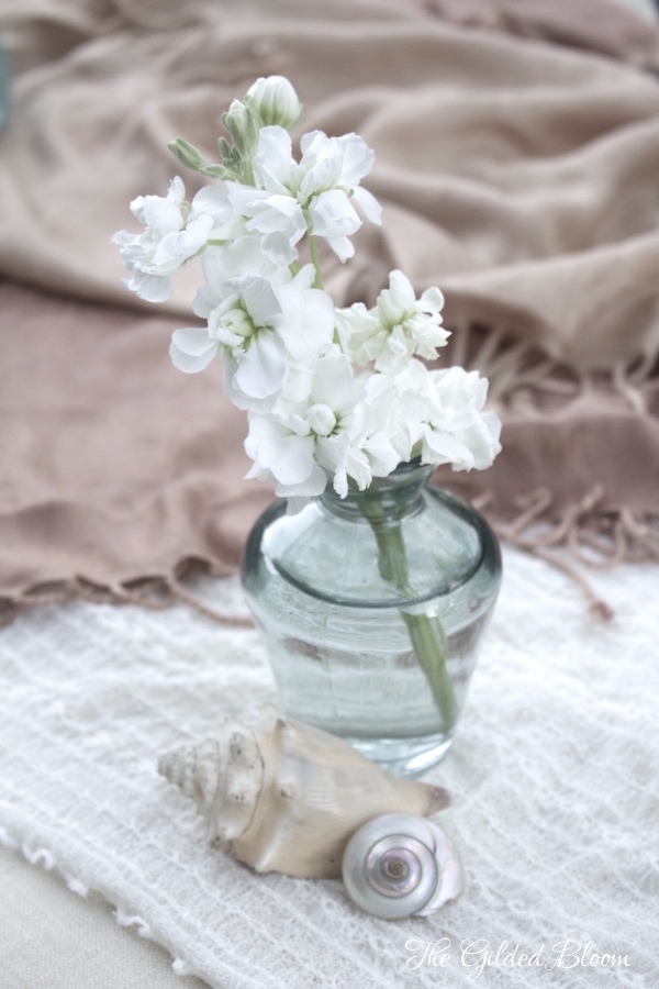 White Flowers and Shells- www.gildedbloom.com