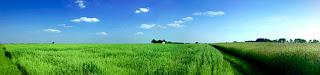 Farming Business Guide