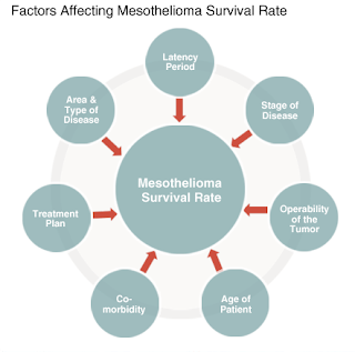Mesothelioma Survival Rate and Life Expectancy