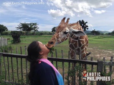 Calauit Wildlife Sanctuary Coron Palawan Busuanga Exotic Philippines Travel Blog