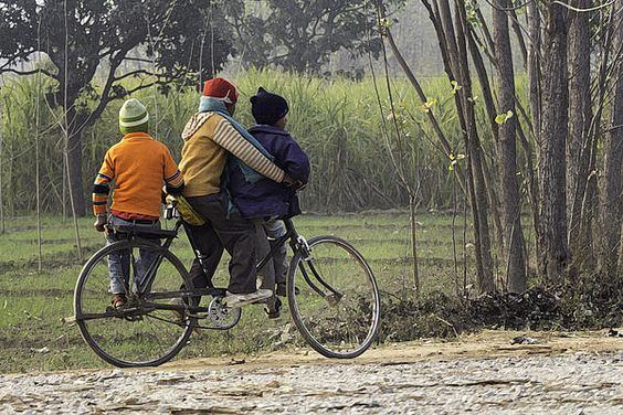 3 young children on a cycle - Prints on Fine Art America
