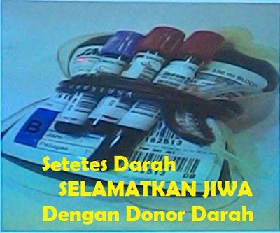 Setetes Darah Selamatkan Jiwa Dengan Donor Darah