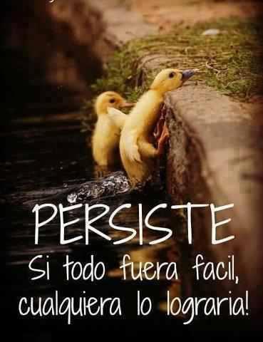 Frases Para Facebook De Los Testigos De Jehova Salud Galicia