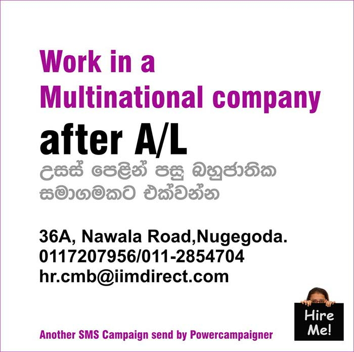 Work in a Multinational company after A/L.