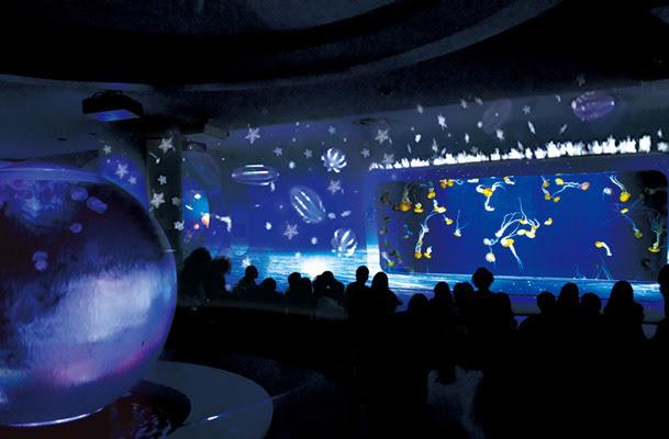 【聖誕活動】新江之島水族館「Night Wonder Aquarium 2016 」 迷人的光影效果