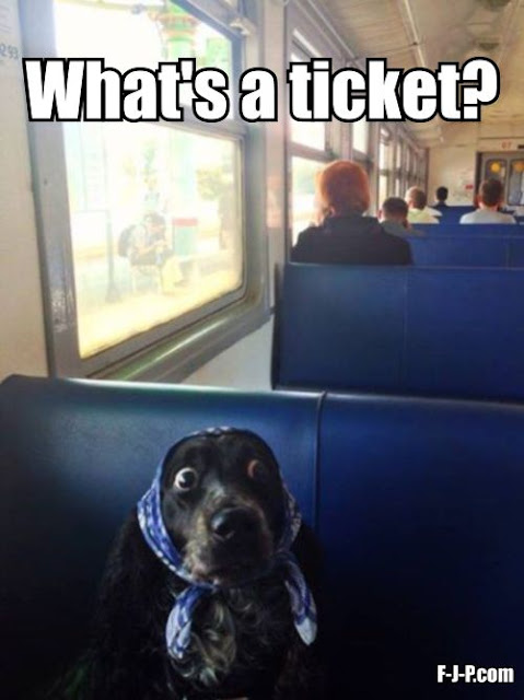 What's a ticket?