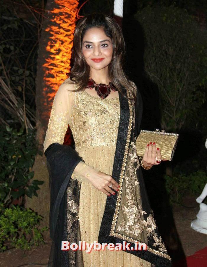 Madhubala, Ahana Deol Wedding & Reception Pics
