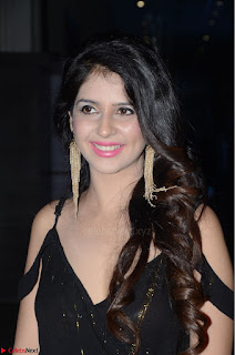 Kashish Vohra at Rogue Movie Audio Launch 002.JPG