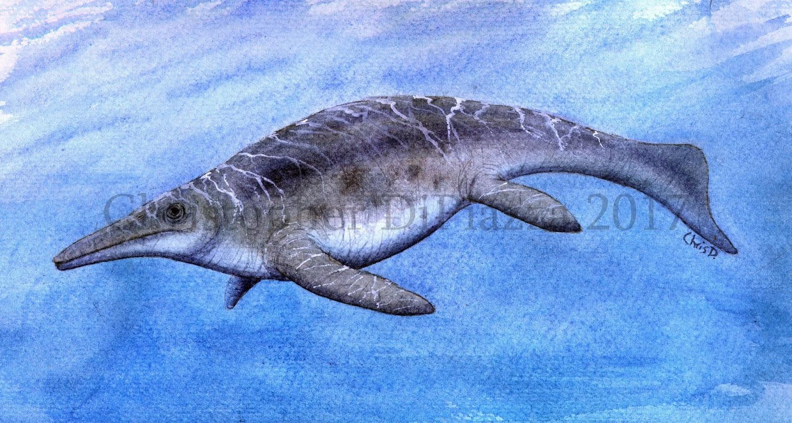 Výsledek obrázku pro Shonisaurus