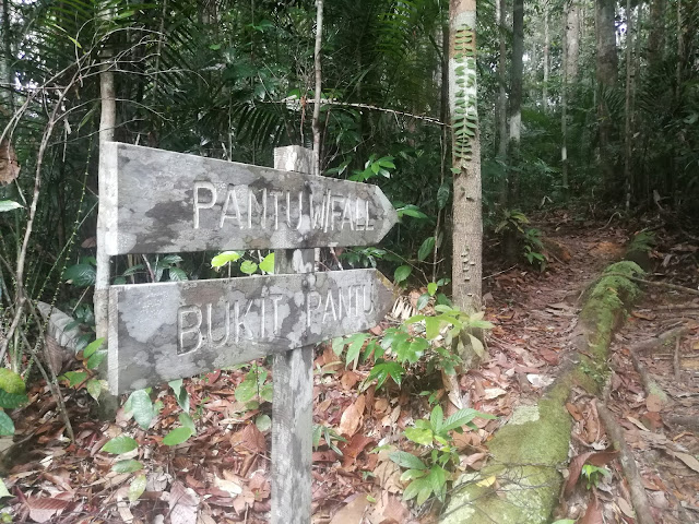 which trail to take at lambir hills miri