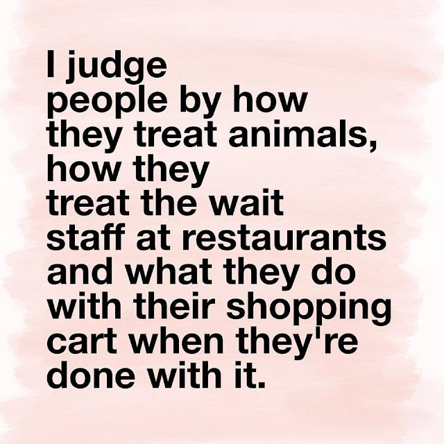 I judge people by how they treat animals