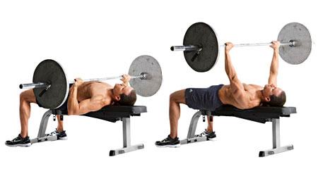bench press untuk melatih otot dada