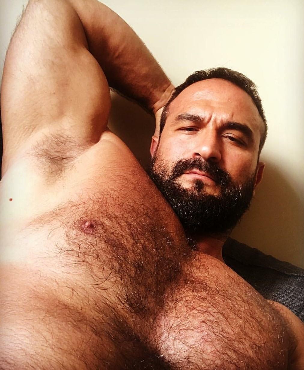 Hairy Chest Alpha Bull - Hairy Gorilla Muscle Pecs - Hairy Pig
