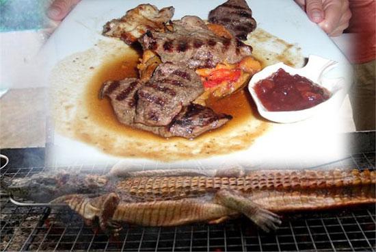 Đặc sản Úc Thịt cá sấu Úc nướng