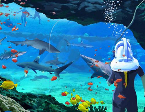 Discoery Cove Orlando - SeaVenture