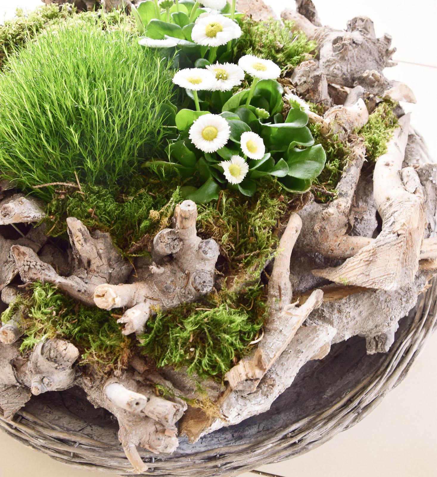 Natürliche Frühlingsdeko Für Euer Zuhause Eclectic Hamilton