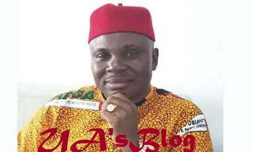 Appeal Court Affirms Ukachukwu As APGA Anambra South Senatorial Candidate
