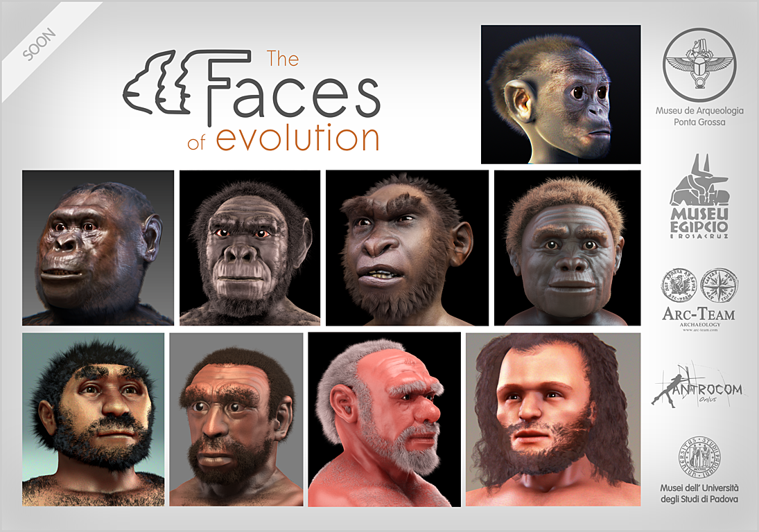 human origins exhibit project essay Now, these warriors—symbols of the astounding achievements of mankind and the incredible history of the human race—come to the franklin institute for the only east coast engagement of a two-city exhibit tour.