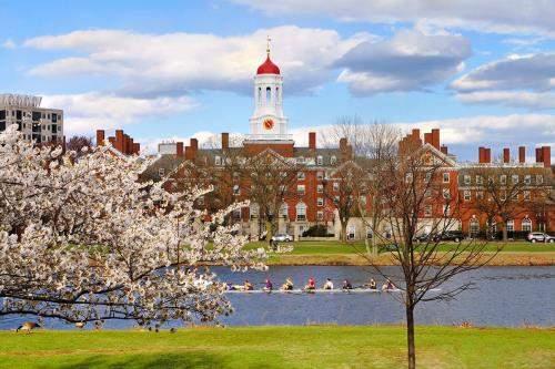Du lịch Mỹ mùa hè kết hợp tìm hiểu môi trường học tập cho con - Ảnh 2