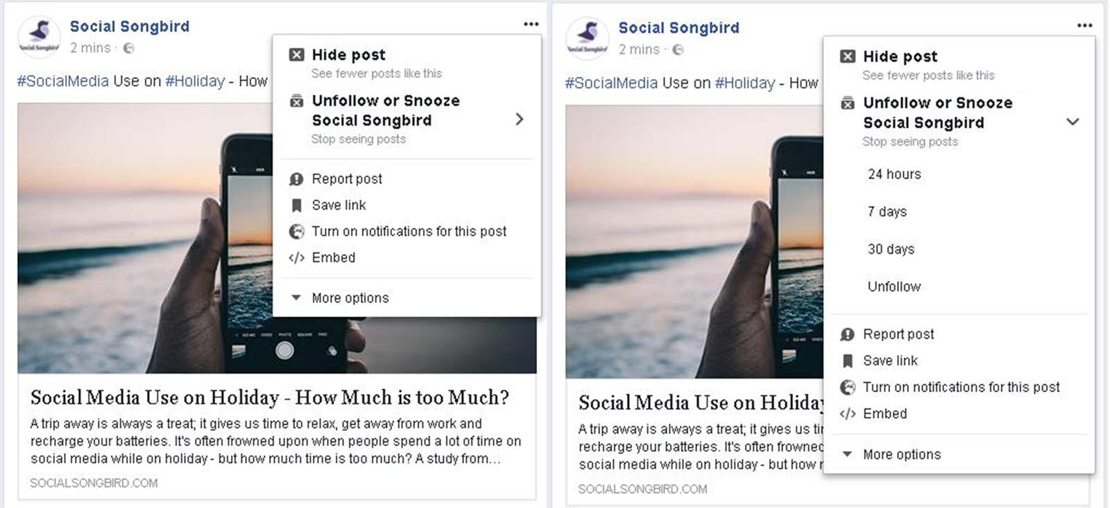 You Can Now 'Snooze' Posts on Facebook - Social Songbird