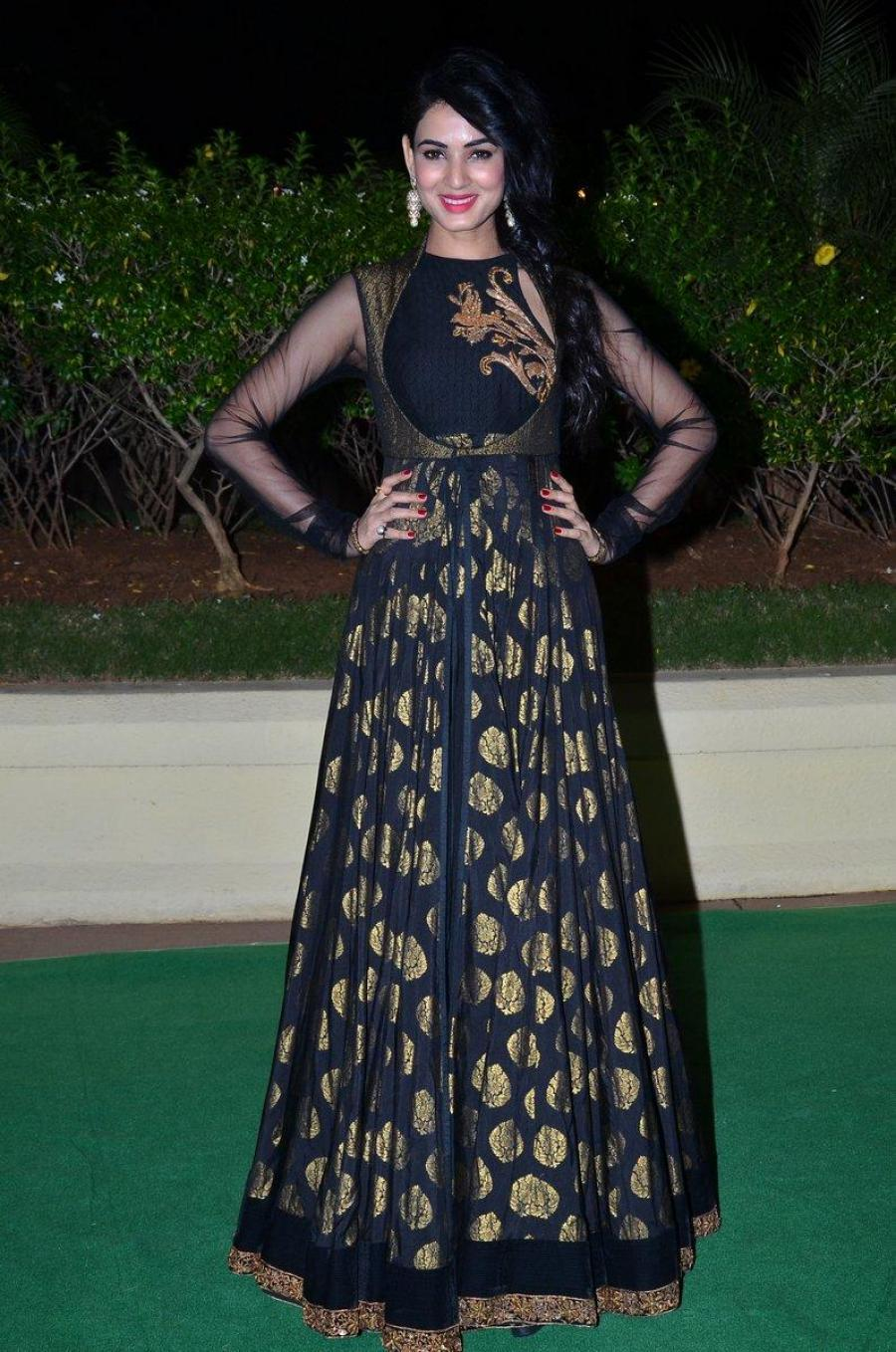 Sonal Chauhan Smiling Photos In Black Dress