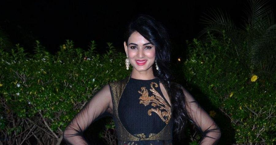 Indian Beautiful Girl Sonal Chauhan At Wedding Reception In Black