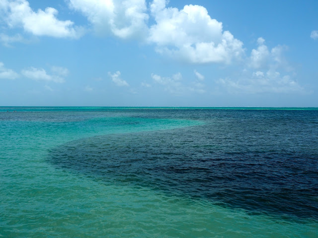 Turquoise Caribbean lagoon around Caye Caulker, Belize