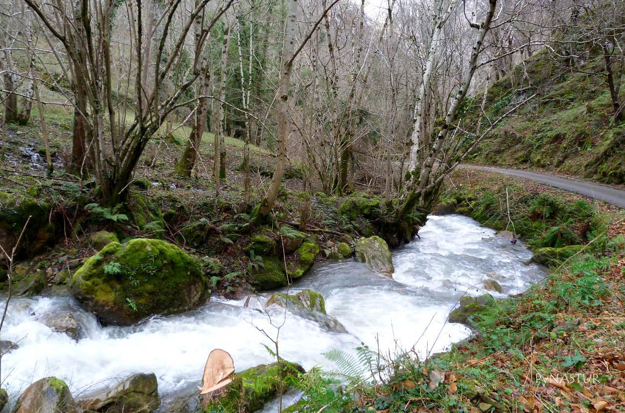 Foz de Los Andamios - Parque Natural de Ponga - Asturias