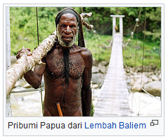 Pribumi Papua dari Lembah Baliem wisataarea.com