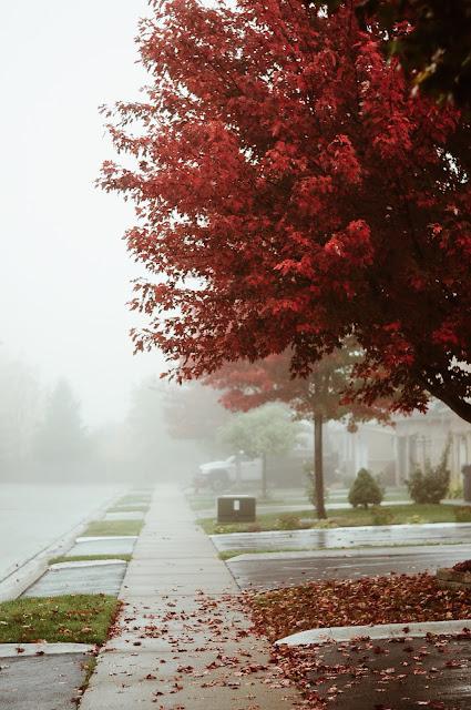 hello monday, monday inspire, jesienne inspiracje, jesienne kolory, jesień w mieście, moda jesień,
