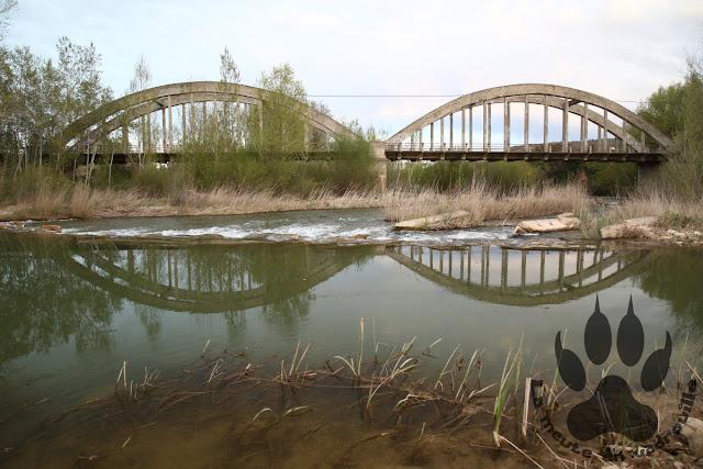 Espagne-Aragon-Ontinena-vivero-riviere