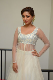 Anu Emmanuel in a Transparent White Choli Cream Ghagra Stunning Pics 013.JPG