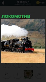 По рельсам в долине спешит локомотив и тащит несколько вагонов за собой
