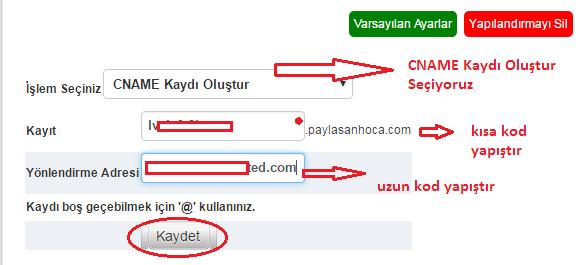 blogger domain yönlendirme