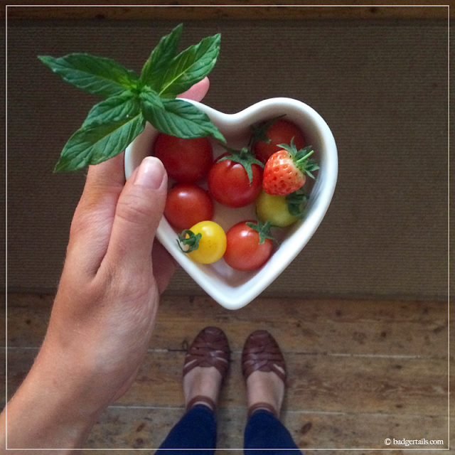 Small-Harvest-of-Tomatoes,-Strawberry-and-Mint