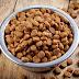 Kandungan Makanan Anjing Yang Berbahaya Bagi Anjing Anda. Penting!