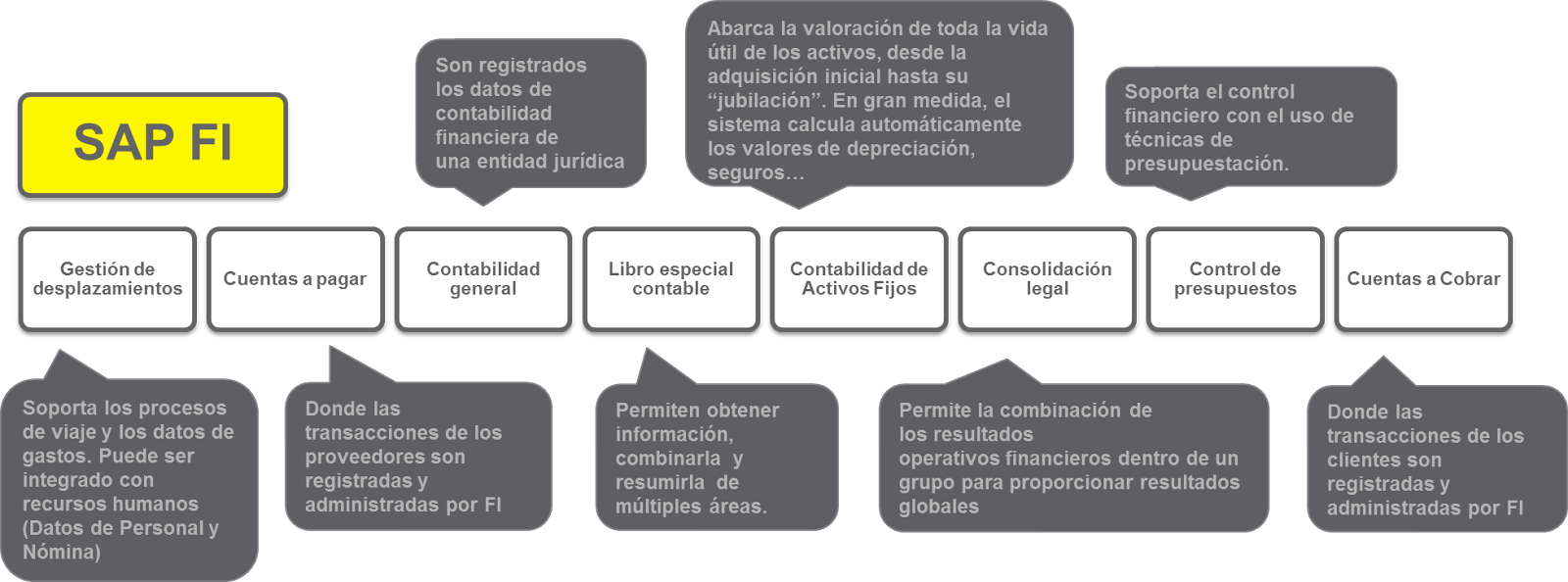 Consultor Sap Fico Introducción Sap Fi Integración