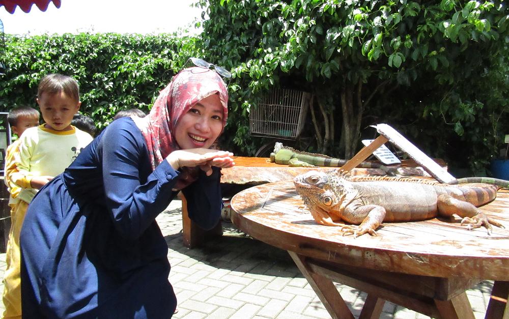 Bunglon Farm House Lembang Bandung