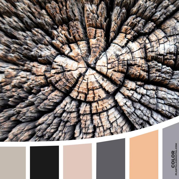 color_490