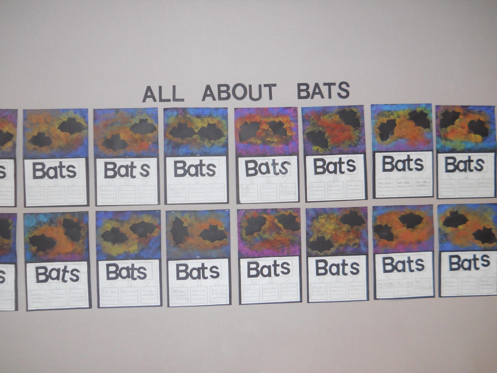 Mrs T S First Grade Class All About Bats